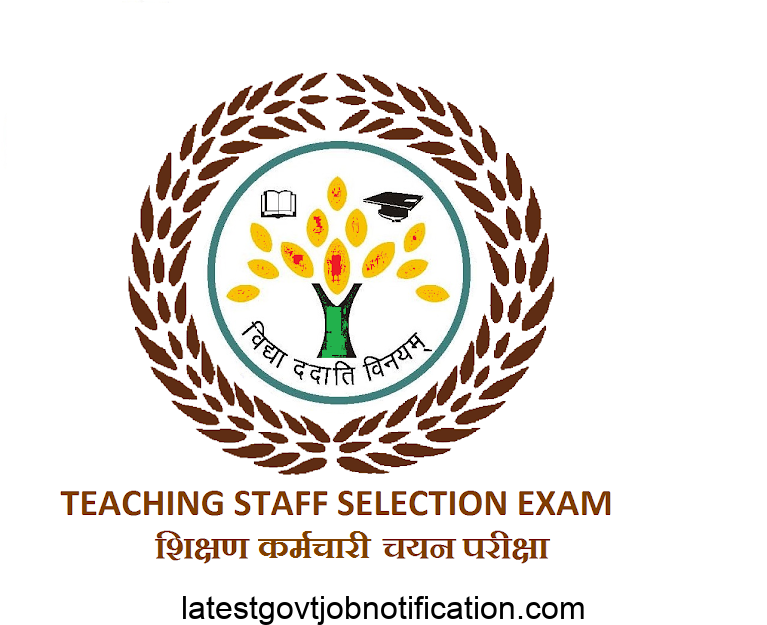 TSSE Assistant Teacher recruitment